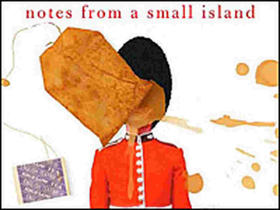 'Notes from a Small Island'