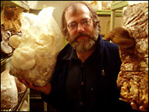 Paul Stamets with mushrooms he's growing at his Mason County, Wash.,  compound. Credit: Tom Banse.