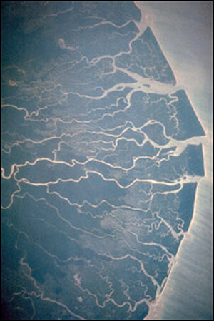 The Niger Delta from space. Credit: NASA.