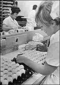 A lab assistant inoculates fertile eggs with Hong Kong influenza Virus in 1968.