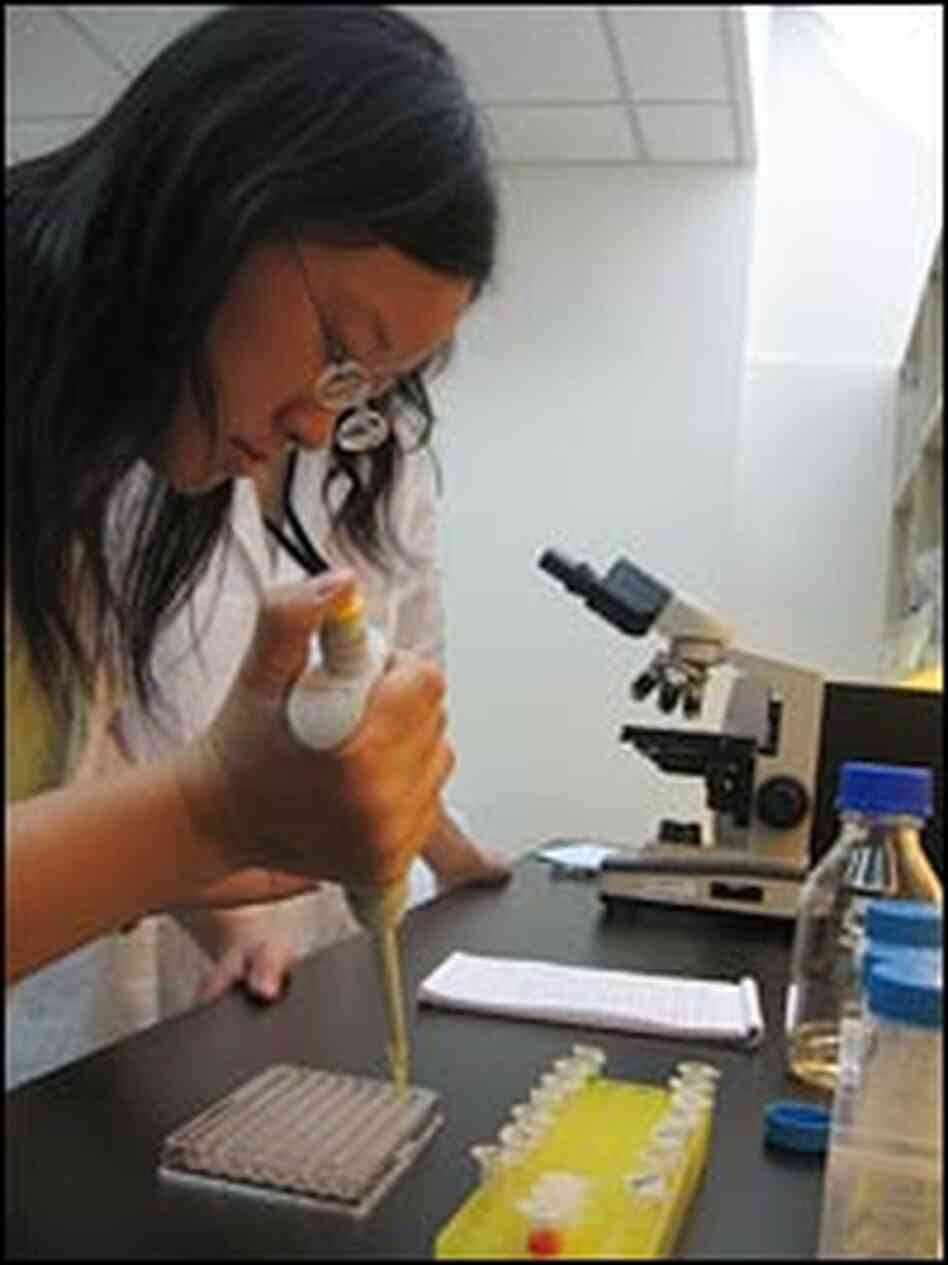 A scientist researches traditional Chinese medicinal compounds.