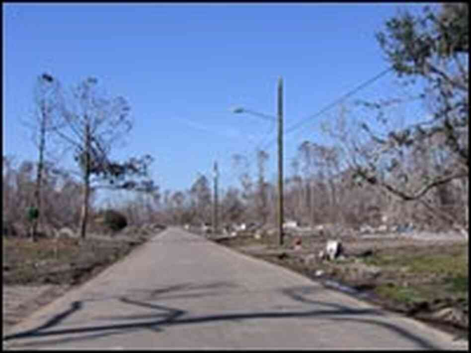 The main street in Waveland, Miss., was lined with homes before Hurricane Katrina came ashore.
