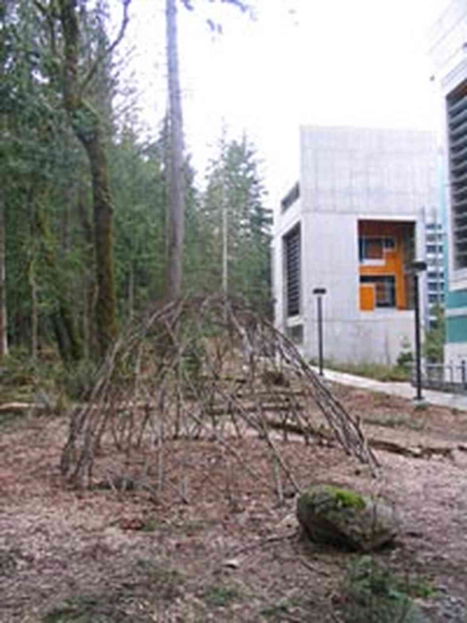 A geodesic dome outside a building at Evergreen State College, built from fallen branches.