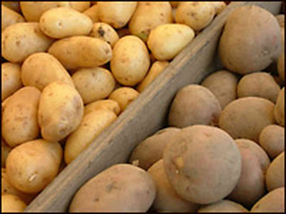 Potatoes. Credit: iStockphoto.com.