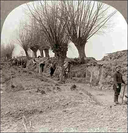 French trenches flanked by gardens during World War I