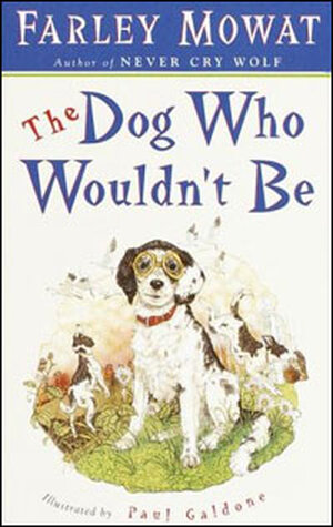 'The Dog Who Wouldn't Be'