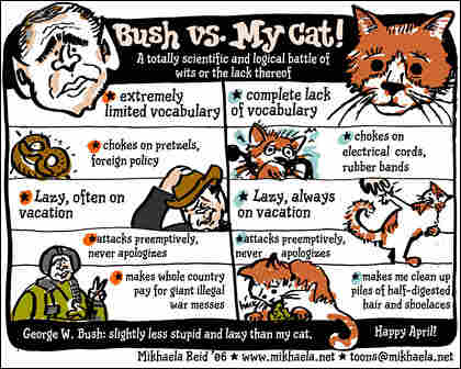 'Bush vs. My Cat'