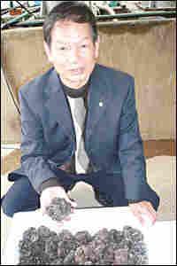 Truffle exporter Wu Jianming displaying his truffles
