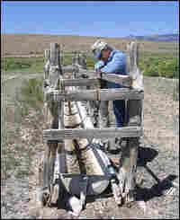 Rancher Dean Baker gazes at a waterless trough.