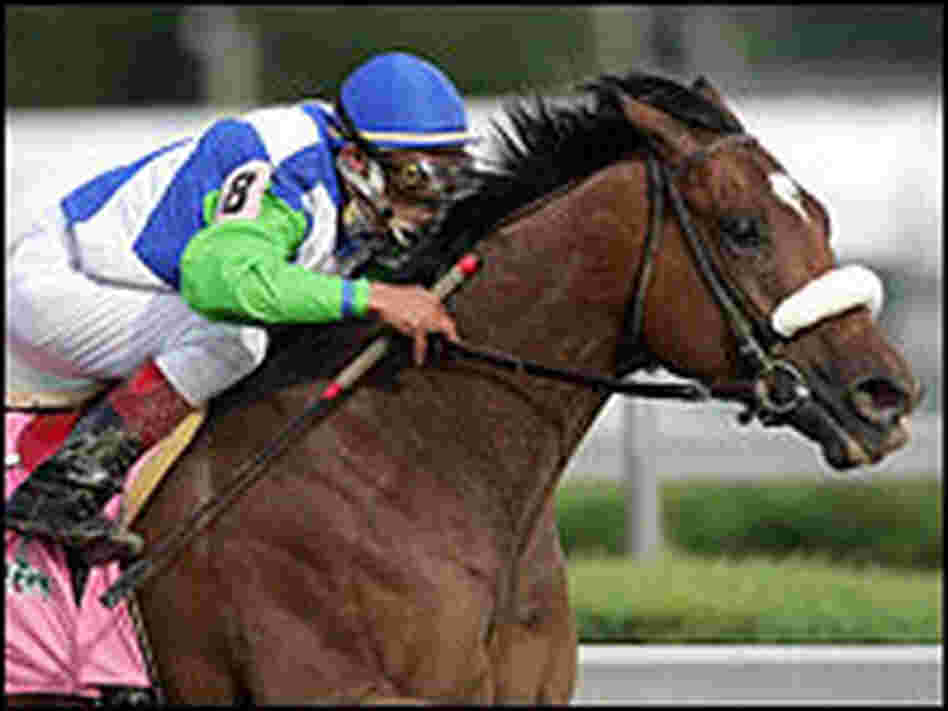 Barbaro, ridden by jockey Edgar Prado, on his way to winning the Kentucky Derby.