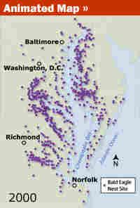 Map of nesting sites on Chesapeake Bay