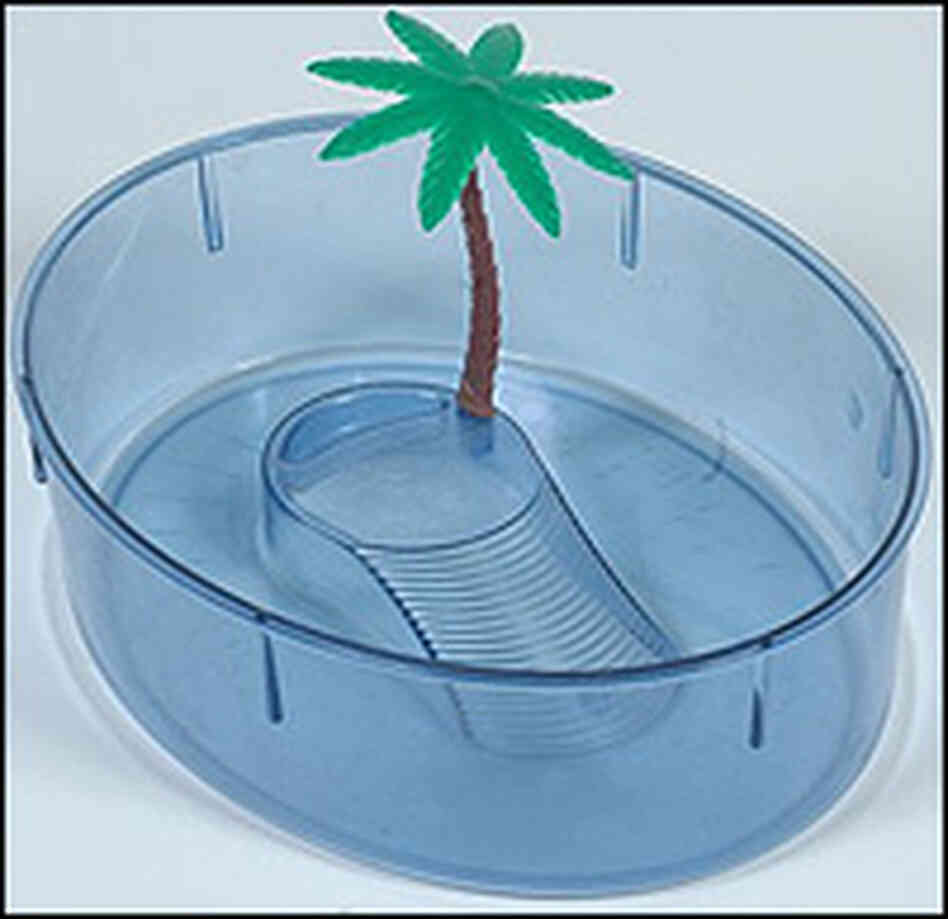 Tiny pet turtles often lived in plastic aquariums like this one.