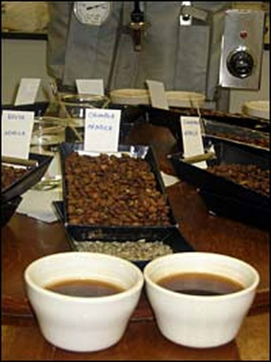 Tasters' Choice: Coffee beans and brewed samples are placed around a table for evaluation.