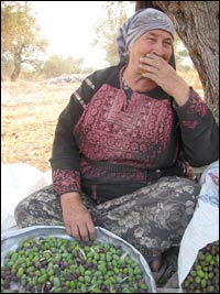 Umm Adnan Yasin holds a metal pan that she uses to separate leaves from olives.