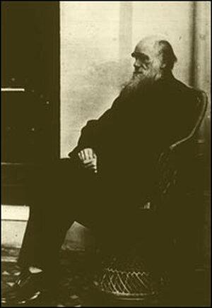 Charles Darwin, circa 1880.