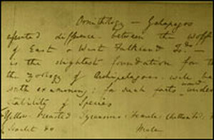 Darwin's first recorded doubts about the 'the stability of species.'