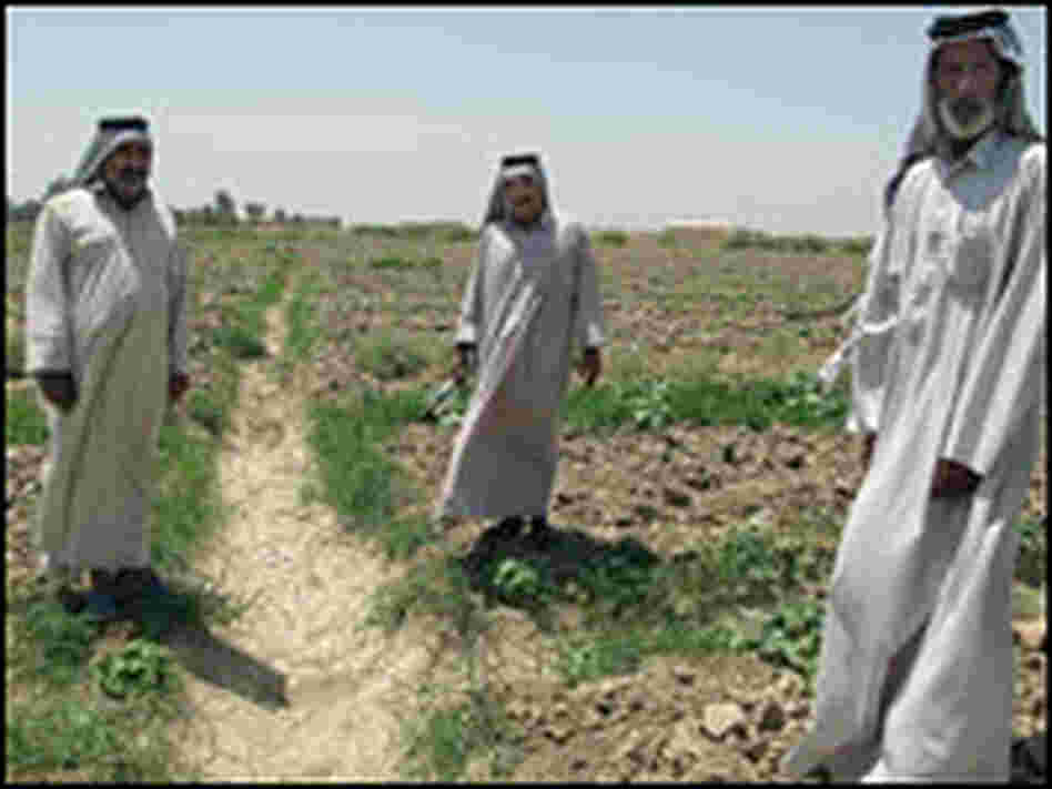 Iraqi farmers stand next to a dried and cracked irrigation ditch.
