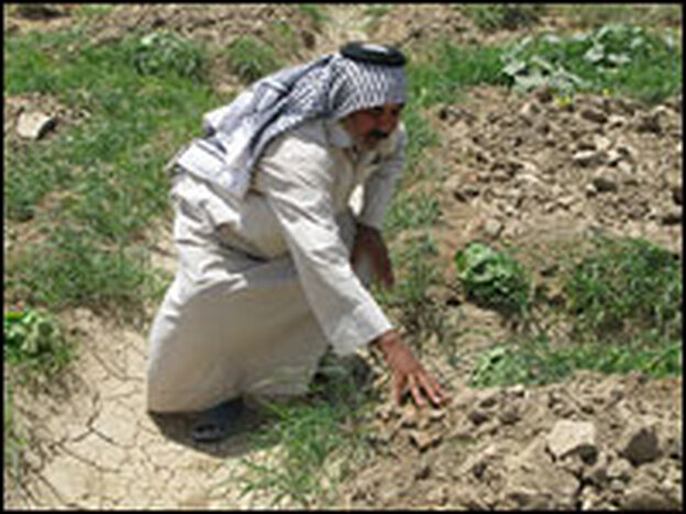 Iraqi farmer Fareed Sha'ban Mohammad touches the dry, cracked earth that should be a cucumber field outside the southeastern city of Diwaniyah. A drought has killed any chance of his growing crops this year.