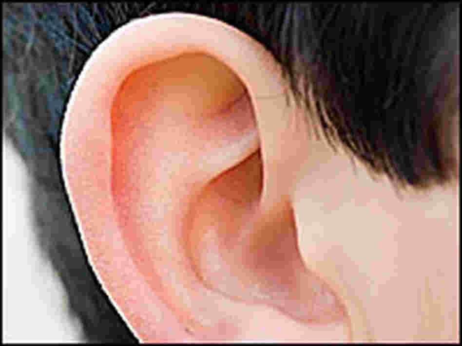 Close-up of a child's ear