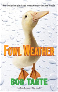 'Fowl Weather'