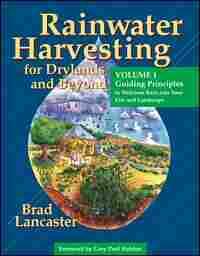 'Harvesting Rainwater'