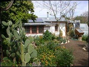 Brad Lancaster's garden