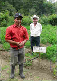 Vincente Sanchez (left) leads a farmers cooperative that sells vegetables directly to Wal-Mart.