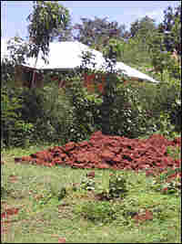 Mound of earth from burned house