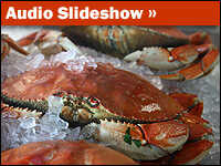 Audio Slideshow on the Dungeness crab industry.