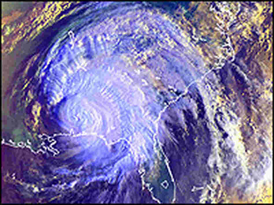 Satellite data allowed scientists to track Hurricane Ivan.