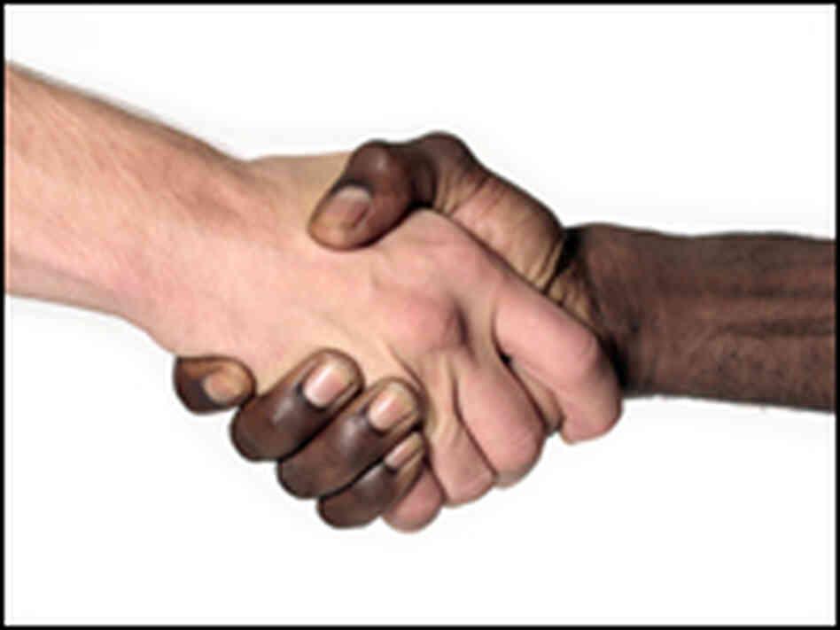 race essay in america