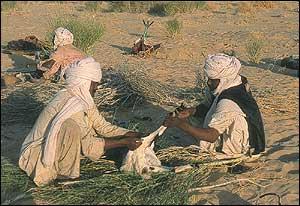 Camp on the Sahara.