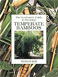 Temperate Bamboo