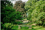 A scene from the Rydal Mount garden