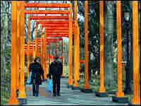 People walk through art installation in New York's Central Park