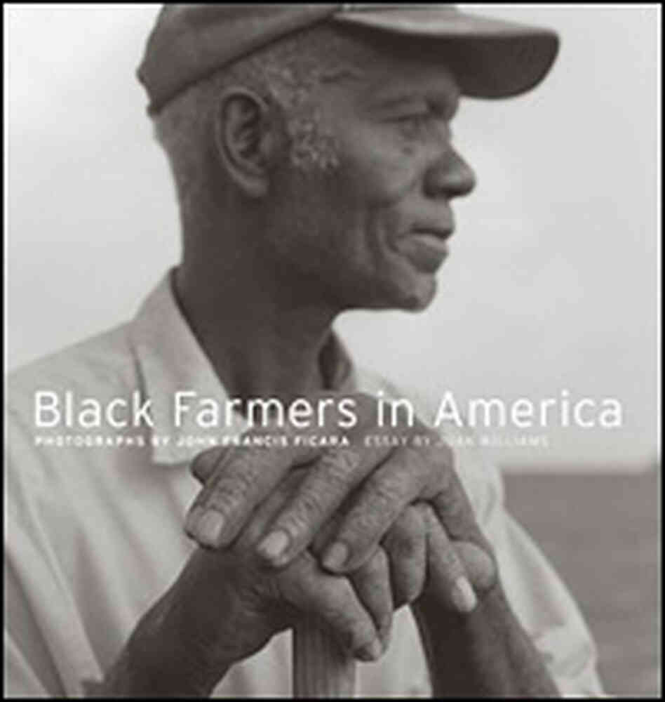 Detail from ''Black Farmers in America'