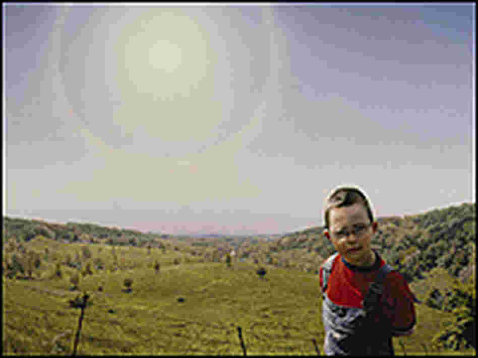 A small boy in a green pasture with a huge, hazy sun.