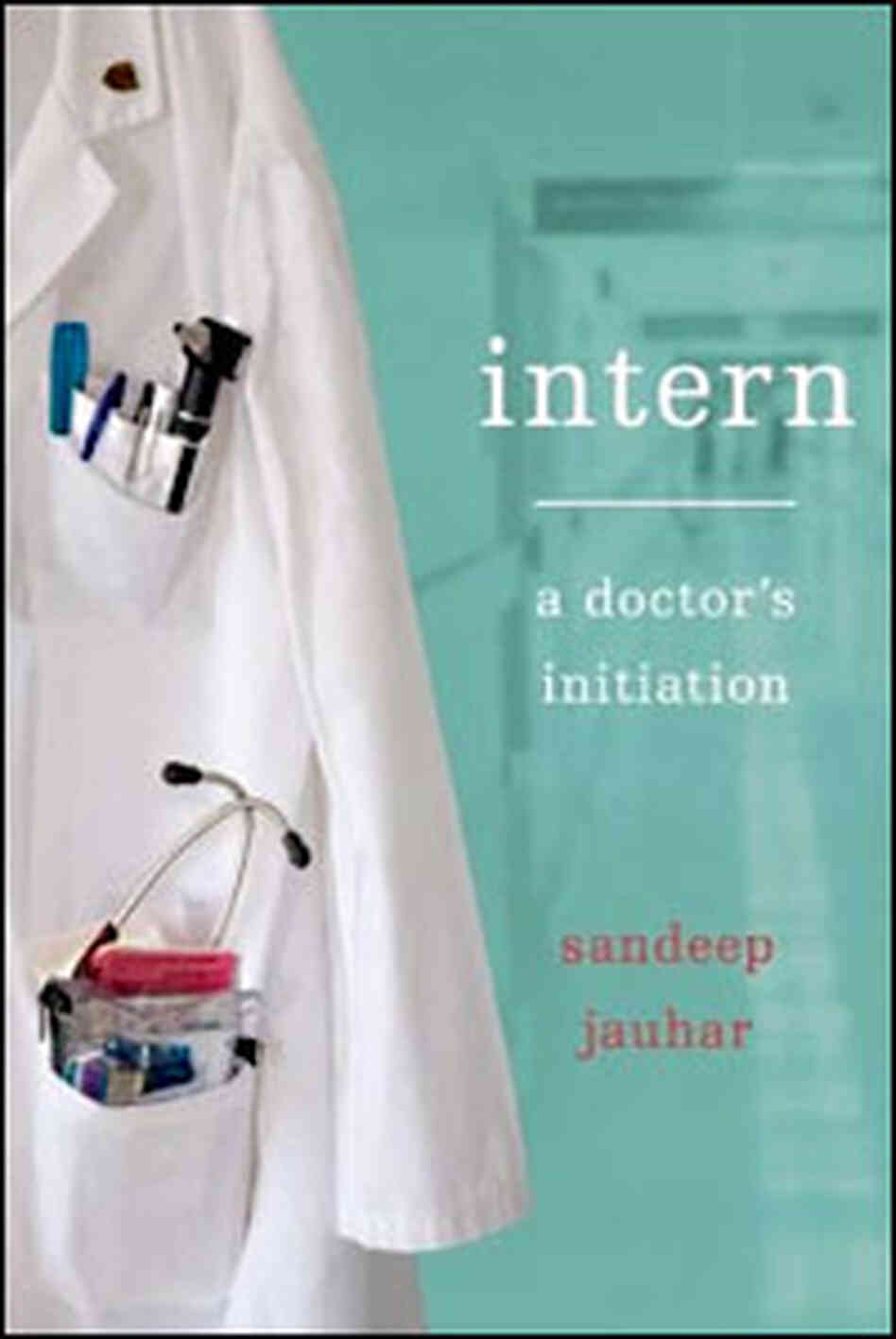 'Intern' Book Cover