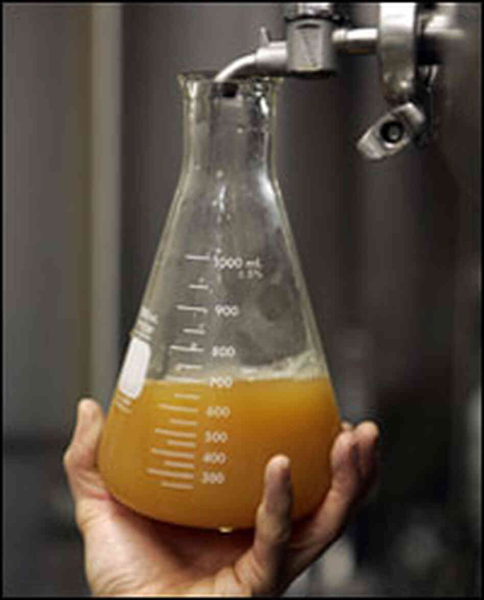 A brewer fills a beaker with beer from a tank.