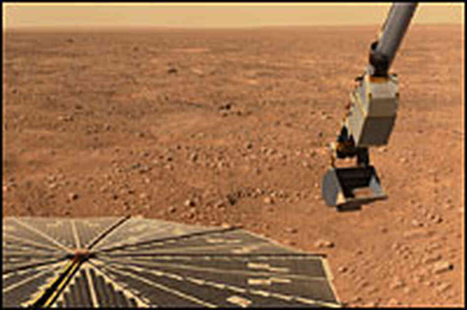 Photo of Martian surface from the Phoenix Mars Lander