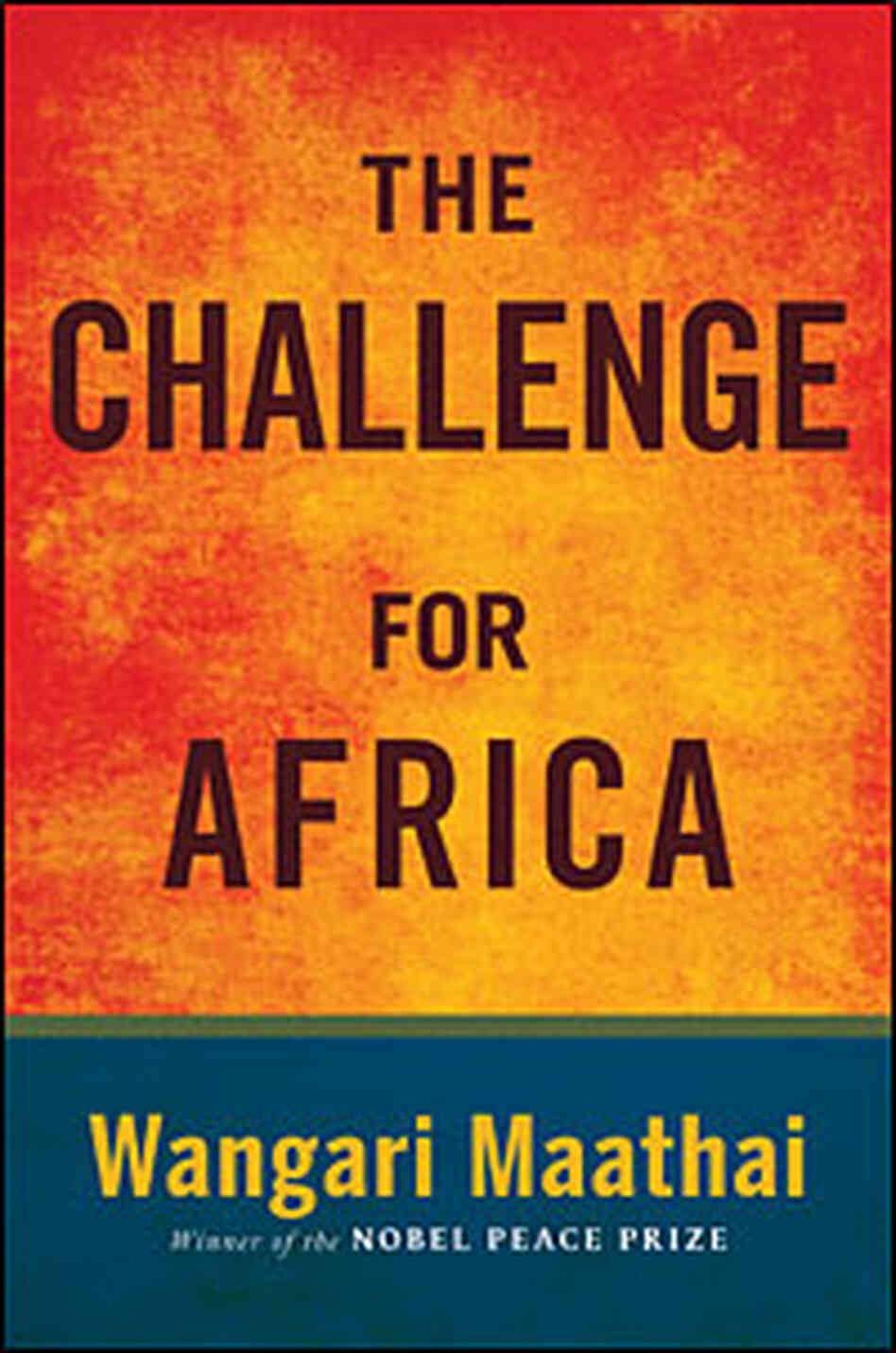 Cover of 'The Challenge For Africa'