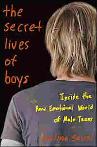 Cover of 'The Secret Lives Of Boys'