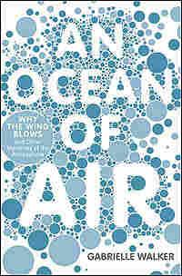 'An Ocean of Air' Book Cover
