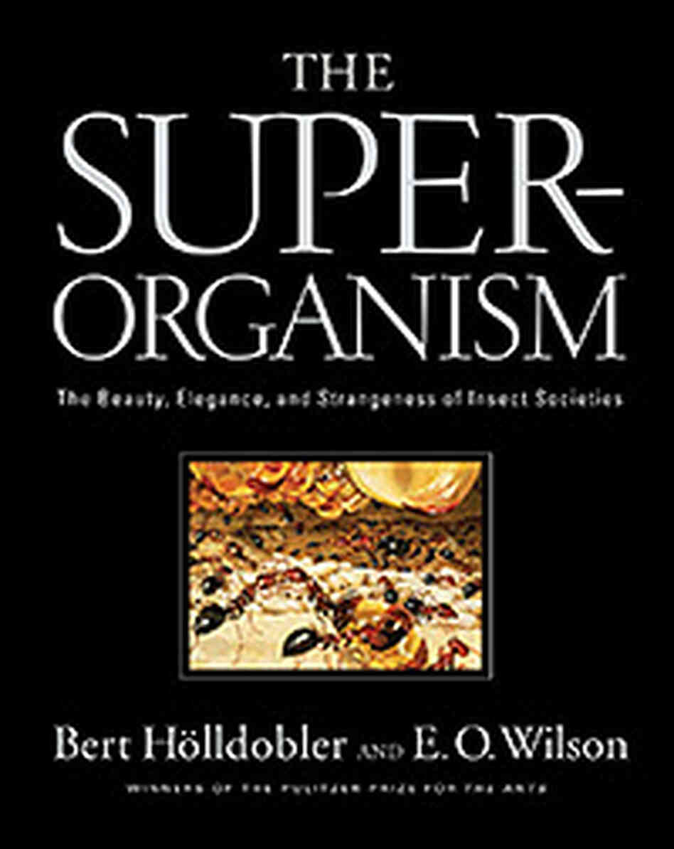 """The Superorganism."" Image courtesy of W. W. Norton & Company"