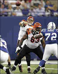 Cincinnati Bengal QB Carson Palmer throws a pass.