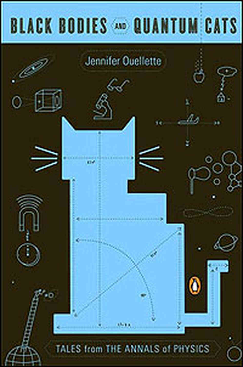 Cover of Black Bodies and Quantum Cats