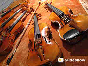 Violin (300)