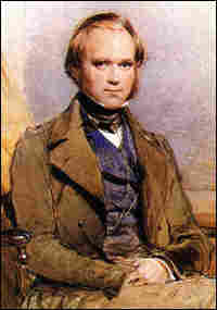 Portrait of Charles Darwin, from the late 1830s