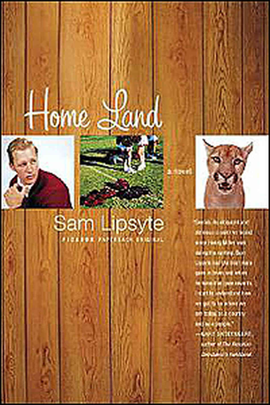 Cover of Home Land, a novel by Sam Lipsyte.