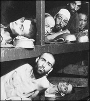 Prisoners in barracks at Buchenwald pictured just after the camp's liberation in 1945.